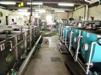 olive oil production company - 1